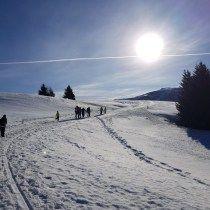 Photo of Dolomiti Ranger: escursione all'Alpe di Siusi per famiglie-VIAGGIO DAI MADRI