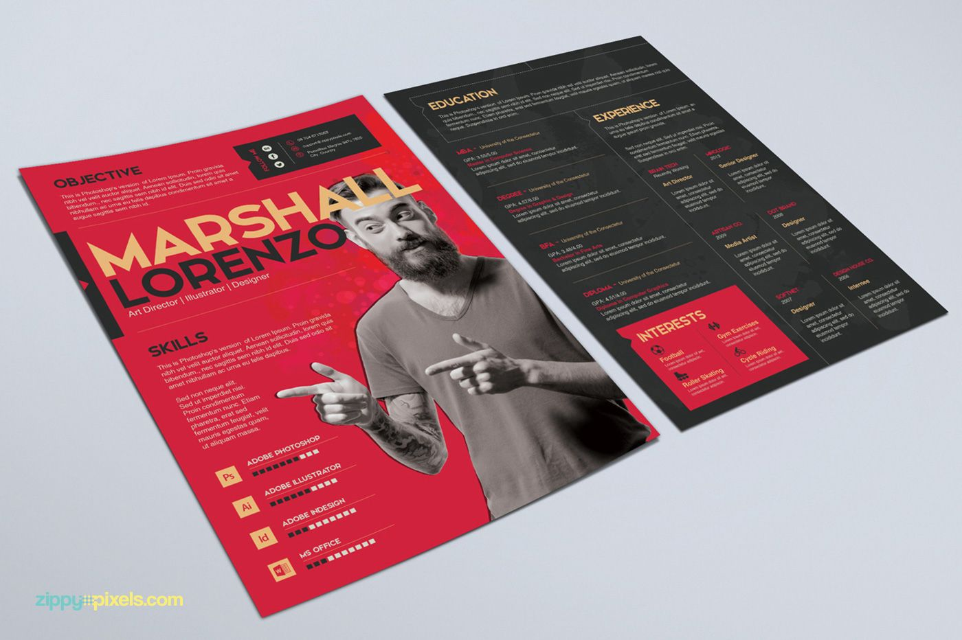 An a4 sized two page resume template that can display all