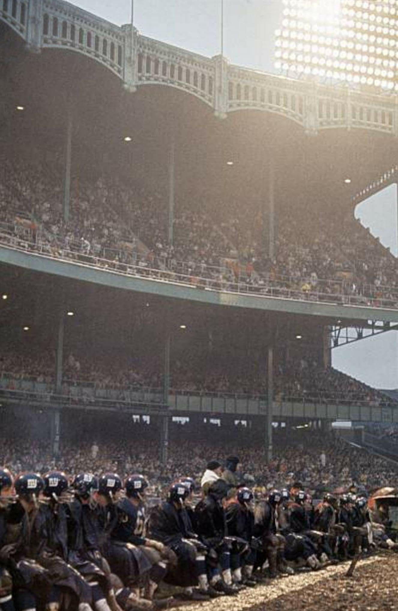 NY Giants bench, Yankee Stadium Ny giants football