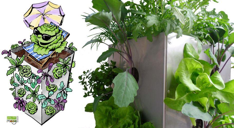 KUBI, ein Garten auf 1m² www.maagdesign.de