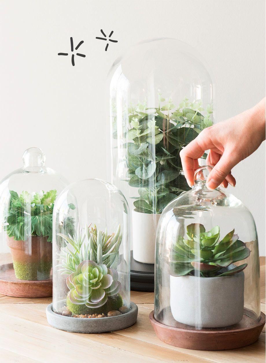 green addict plantes artificielles sous cloche encyclopedia of my life pinterest deco. Black Bedroom Furniture Sets. Home Design Ideas