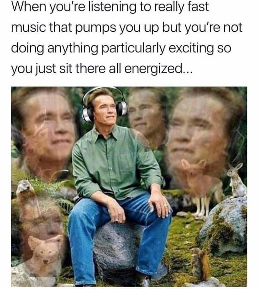 Im Pumped Right Now Really Funny Memes Funny Relatable Memes Stupid Funny Memes