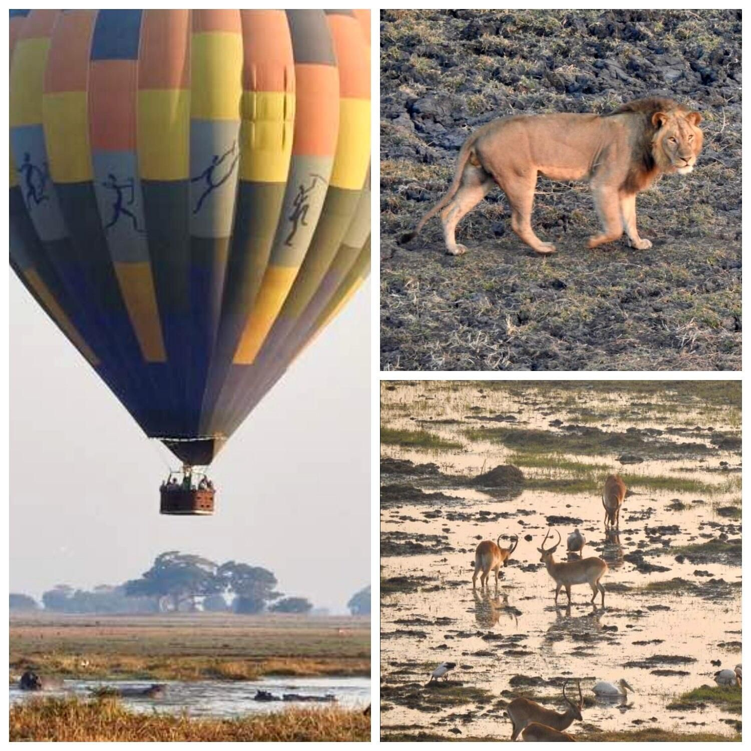 Our Busanga Plains hot air ballooning season is off to a
