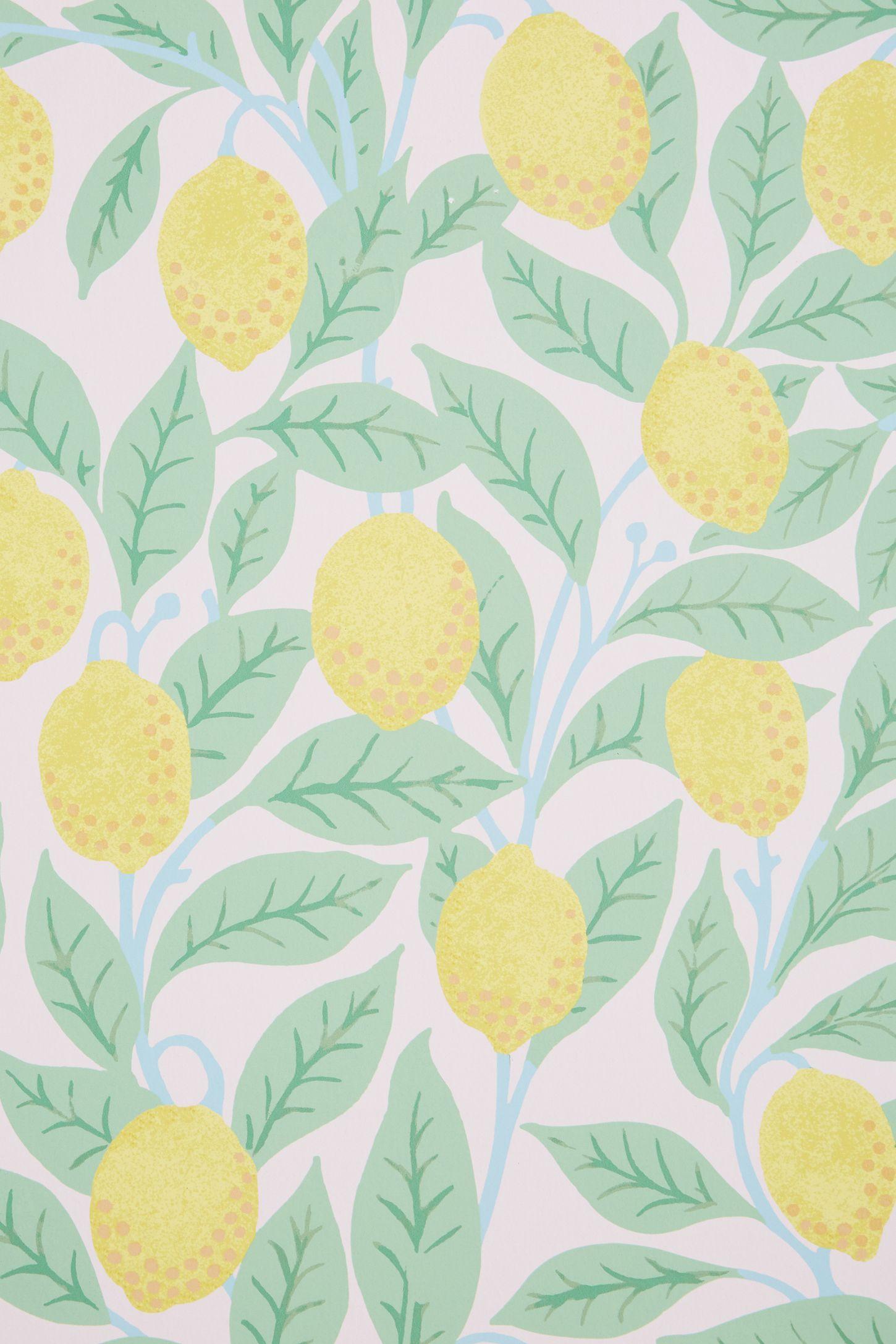 Lemons Wallpaper by Anthropologie in Blue, Wall Decor in