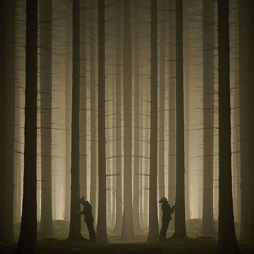 children-family-photography-rural-sebastian-luczywo-13 árboles