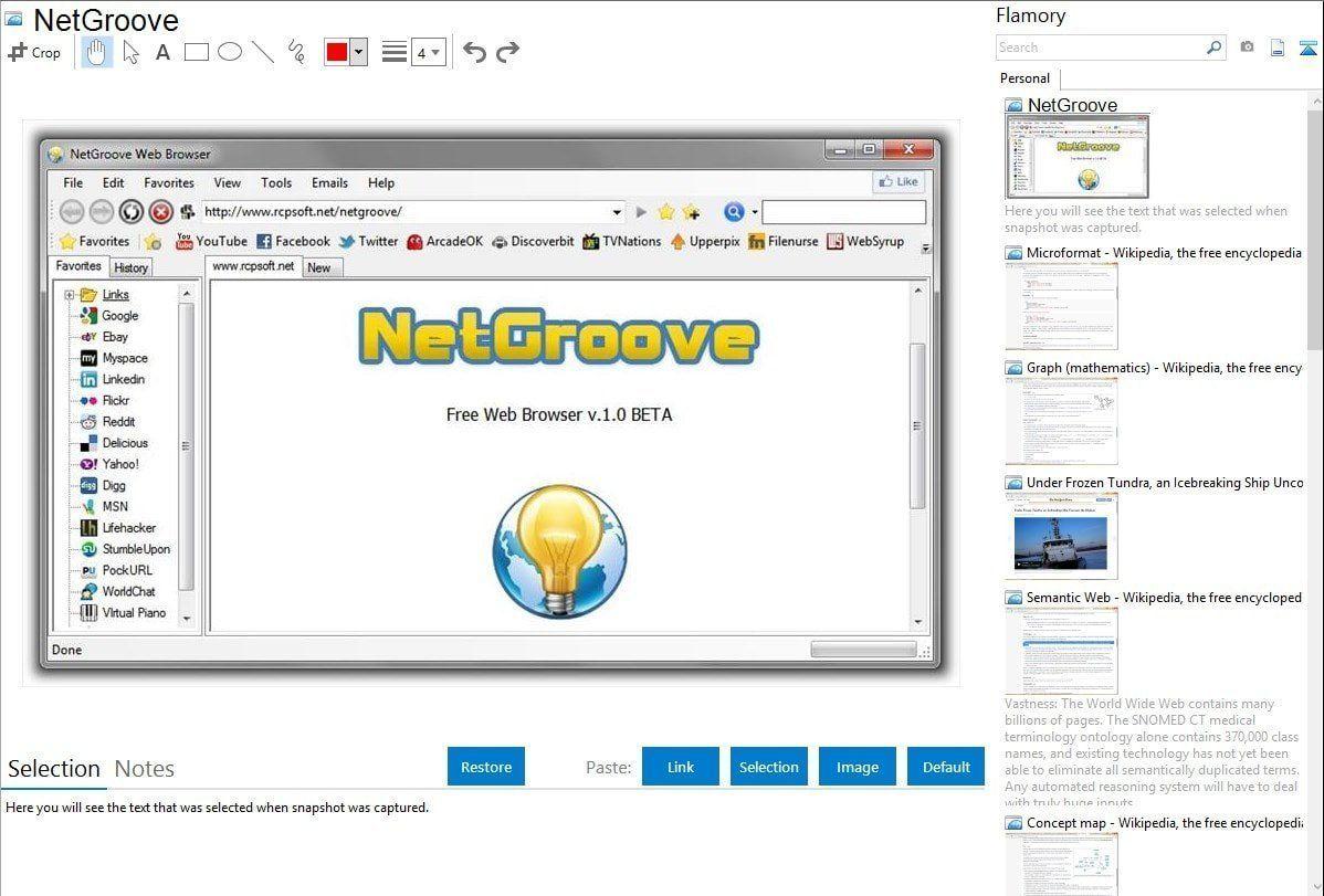NetGroove Browser | Web browser, Browser, Brave web browser
