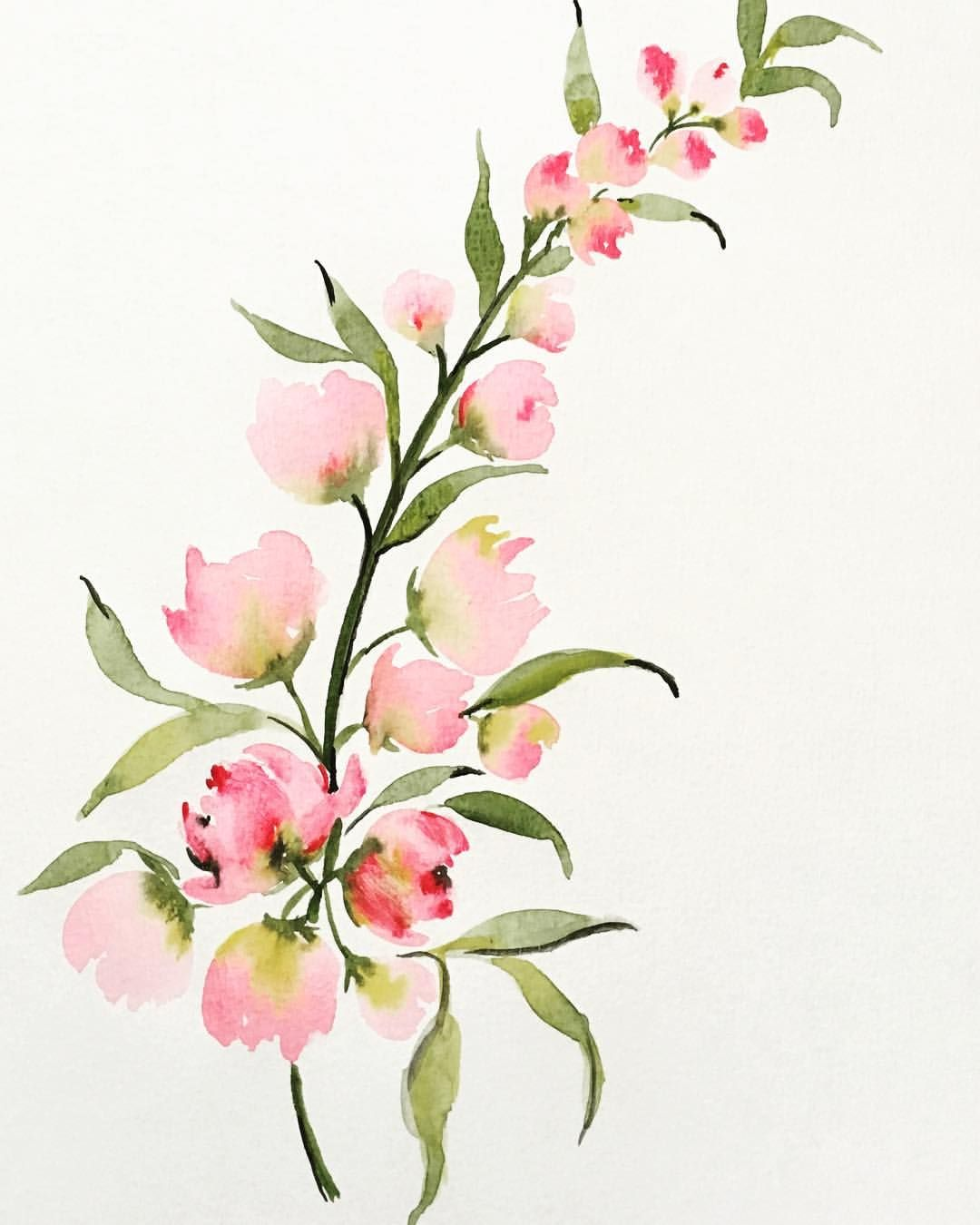 #flowerstagram #flowerartgraphy #flowers #flower #flower_daily #flowersofinstagram #flowerart ##flower_beauties_ #flowermagic #florals…
