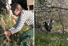 Lovely Permakultur Garten anlegen Tipps aus Hannes Permagarten