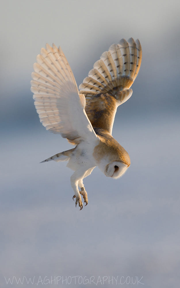 Hover mode by Tony House / 500px