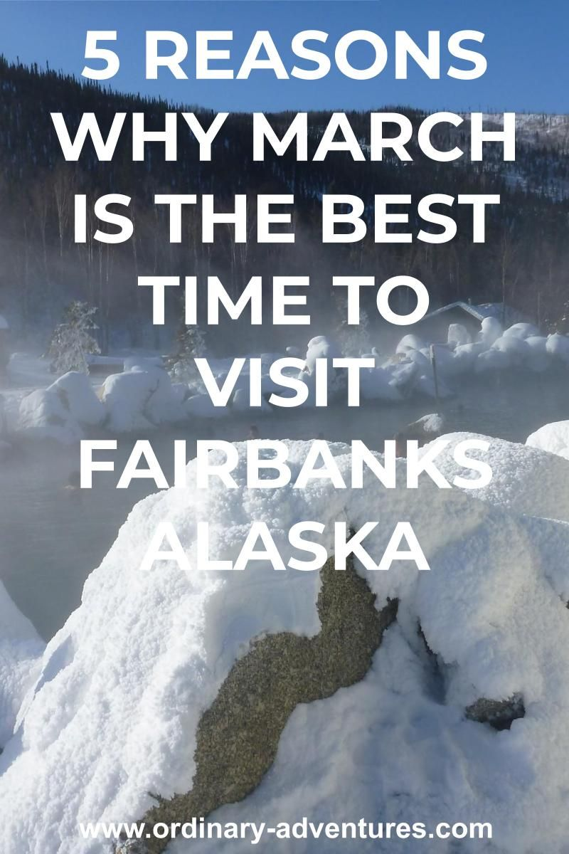 Photo of Why March is the Best Time to Visit Fairbanks Alaska