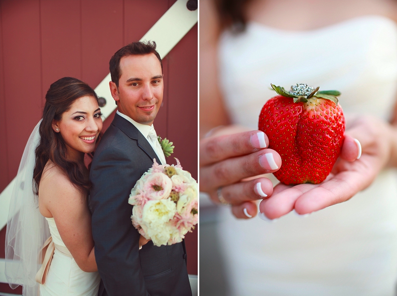 Angela Mae Photography. Floral Design by Sugar Branch Events. Strawberry Farms, Irvine, CA.