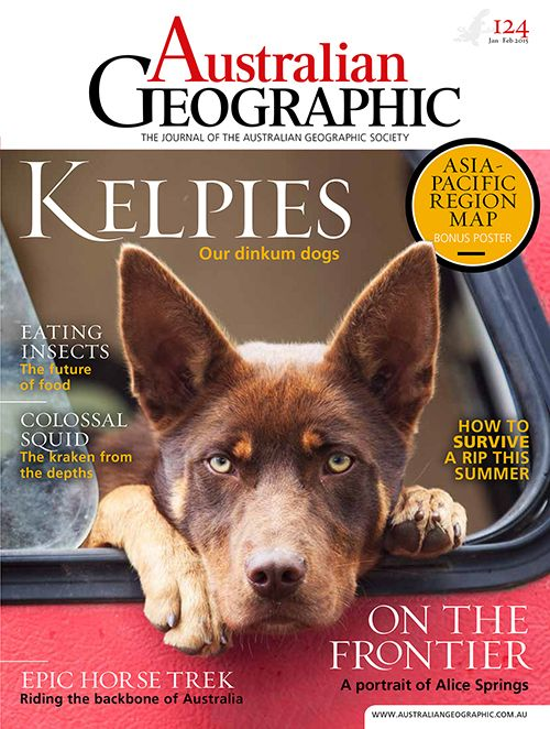 A Great Magazine With The Best Dogs In The World Caravan