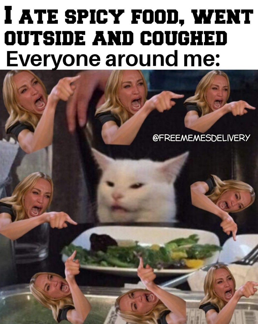 Pin on Two Women yelling at a cat Meme 2020