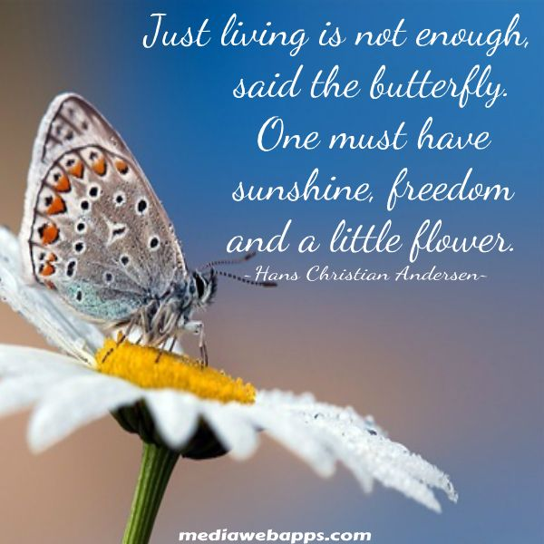 Just living is not enough said the butterfly.  One must have sunshine, freedom and a little flower.  Hans Christian Andersen