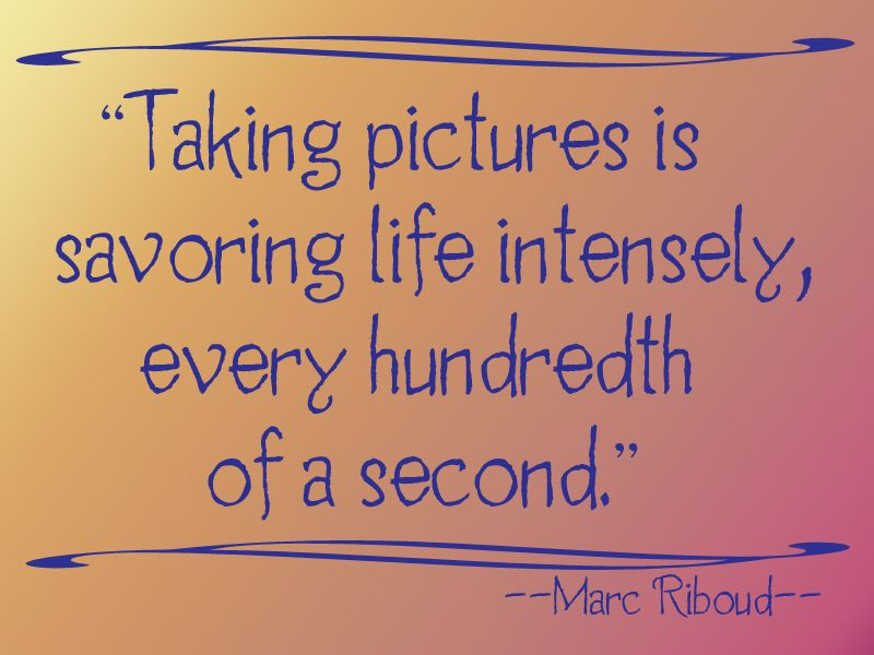 Quotes About Taking Pictures and then some lol for my mom Taking pictures is savoring life  Quotes About Taking Pictures