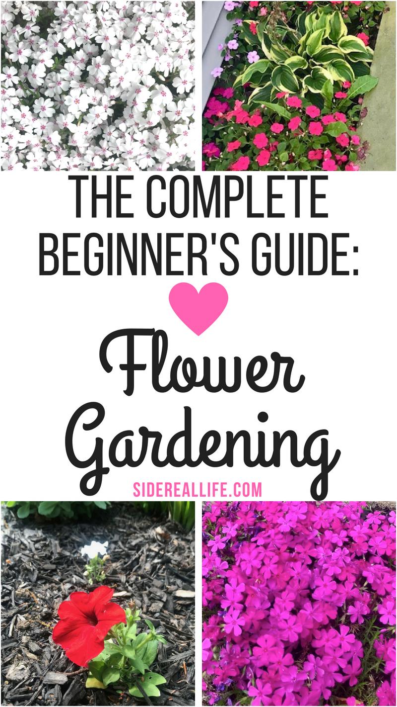 So starten Sie einen Blumengarten für Anfänger! Eine Schritt-für-Schritt-Anle...