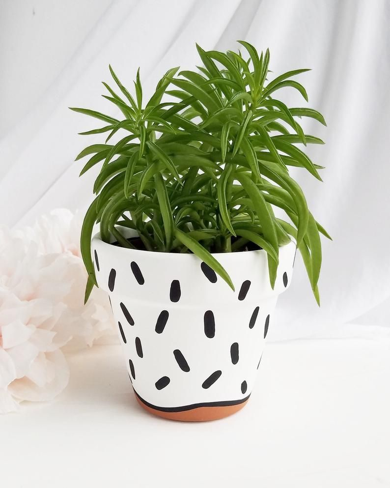 Terra Cotta Cooking Pots Have More Works By Using In Comparison With Growing House Plants And In 2020 Painted Terra Cotta Pots Painted Plant Pots Painted Flower Pots