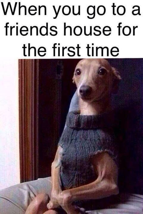 When you go to a friends house the first time. It's funny because it's true!