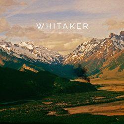 Whitaker - I Will Break Your Heart