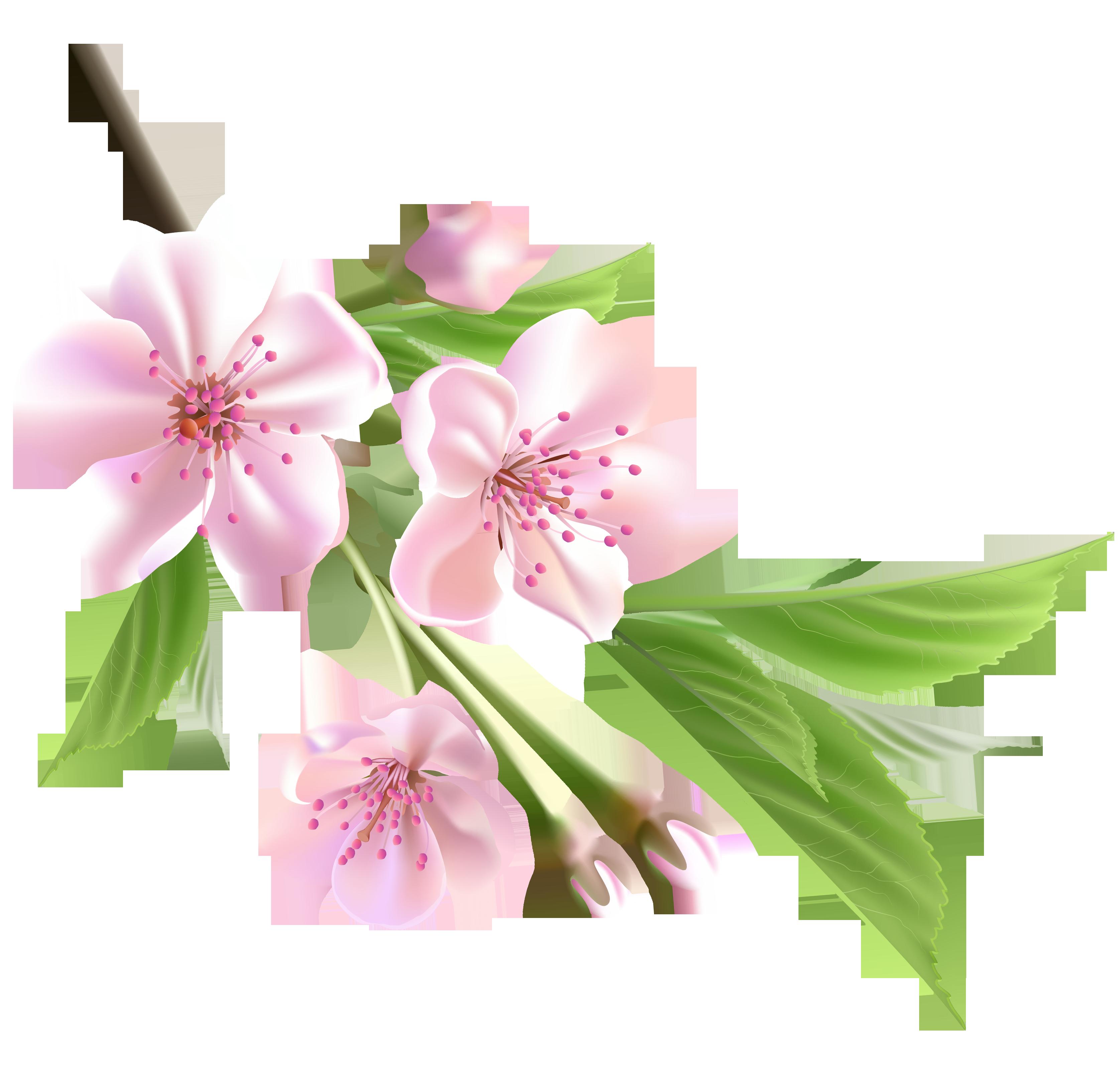 Pink Spring Flowers Clip Art
