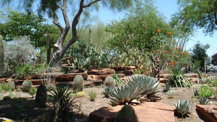8c26f2c190ea1b60923915a3e7f97ccd - Ethel M Chocolate Factory And Botanical Cactus Gardens Las Vegas