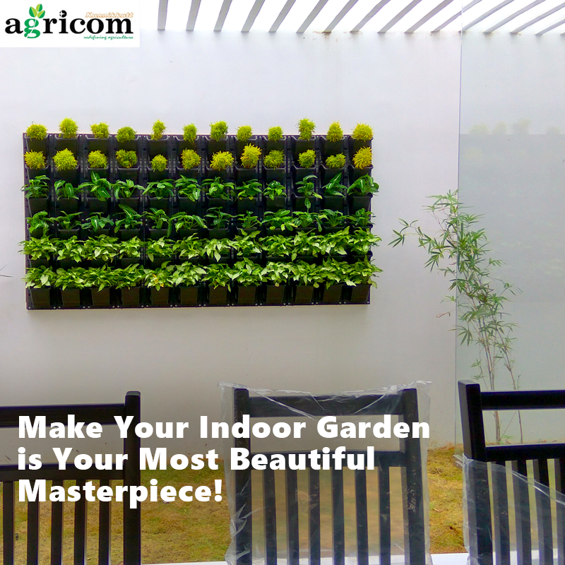 we create and maintain indoor and outdoor gardens contact us for your indooroutdoor