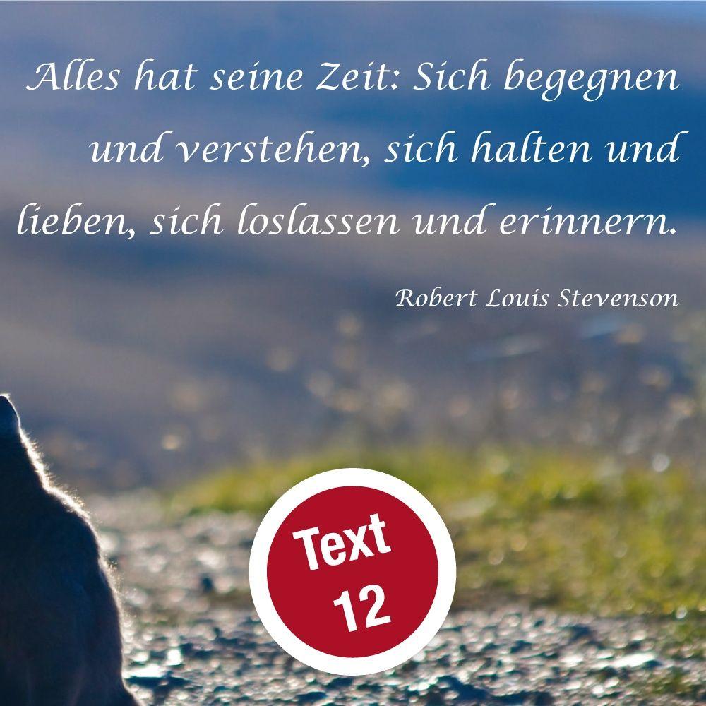 Trauerkarte 003 Katze Ruhmservice Shop De Trauer Tierarzt Trauer Wunsche