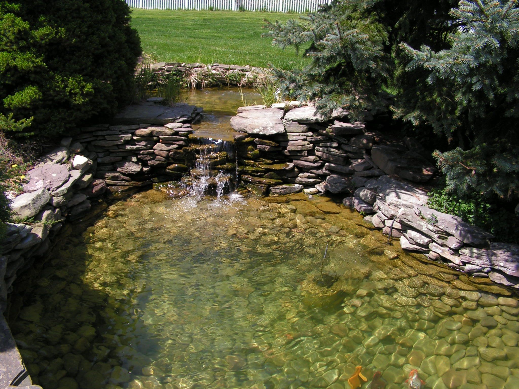 Koi pond waterfall rockscape pond ideas pinterest koi for Koi fish pond ideas