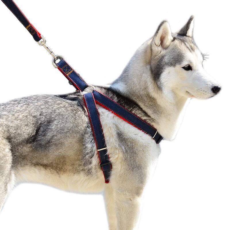 4 Size Dog Leashes Adjustable Denim Pet Harness Set Lead Leash ...
