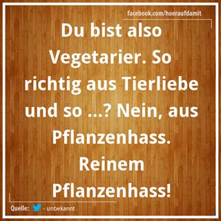 vegetarier | fun | Funny Quotes, Funny und Hilarious