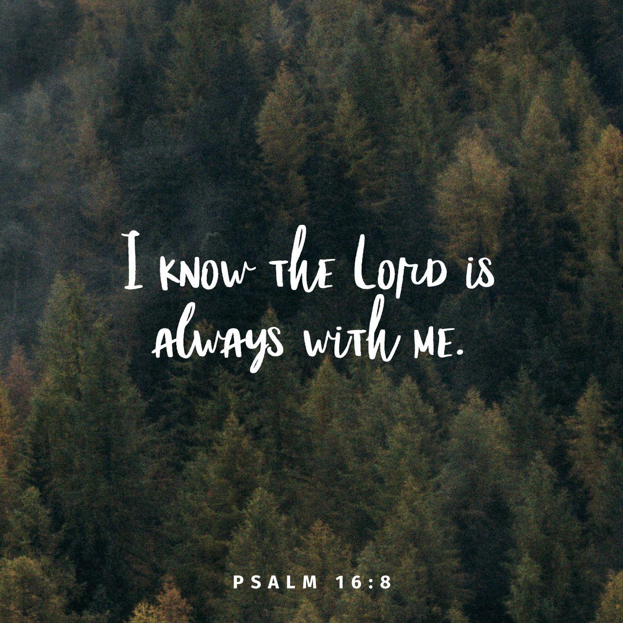 Psalms 16 8 Inspirational Image: Bible Quotes, Bible Verses