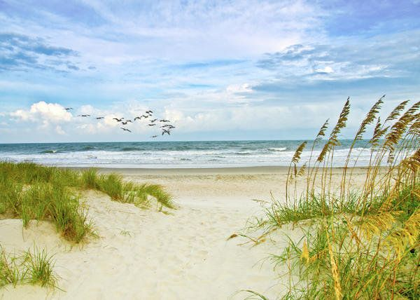 8c4be5fc161 beach+scene+paintings