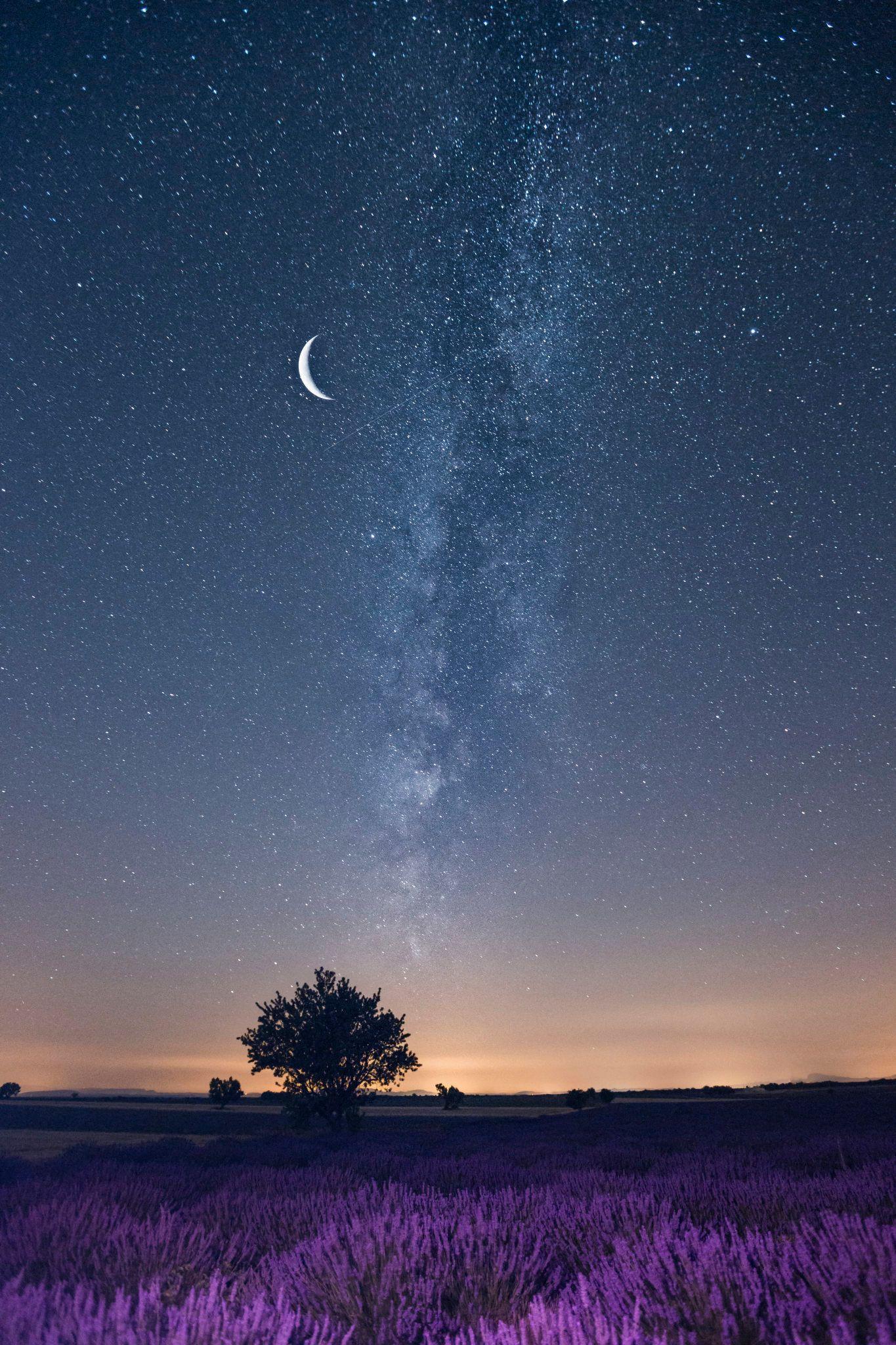 流星划破了天际_浪漫星空 - 七月的普罗旺斯薰衣草盛开,空气中弥漫着淡淡的 ...