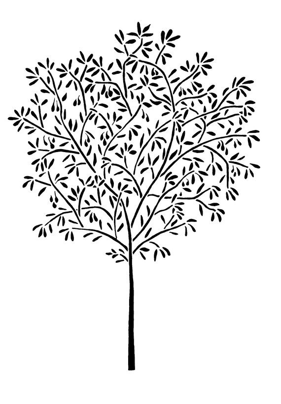 Wall STENCIL Reusable 5 Ft OLIVE TREE Home By OliveLeafStencils 7995Cute But You Could Free Hand This With Acrylic Paint Trees Arent Perfect