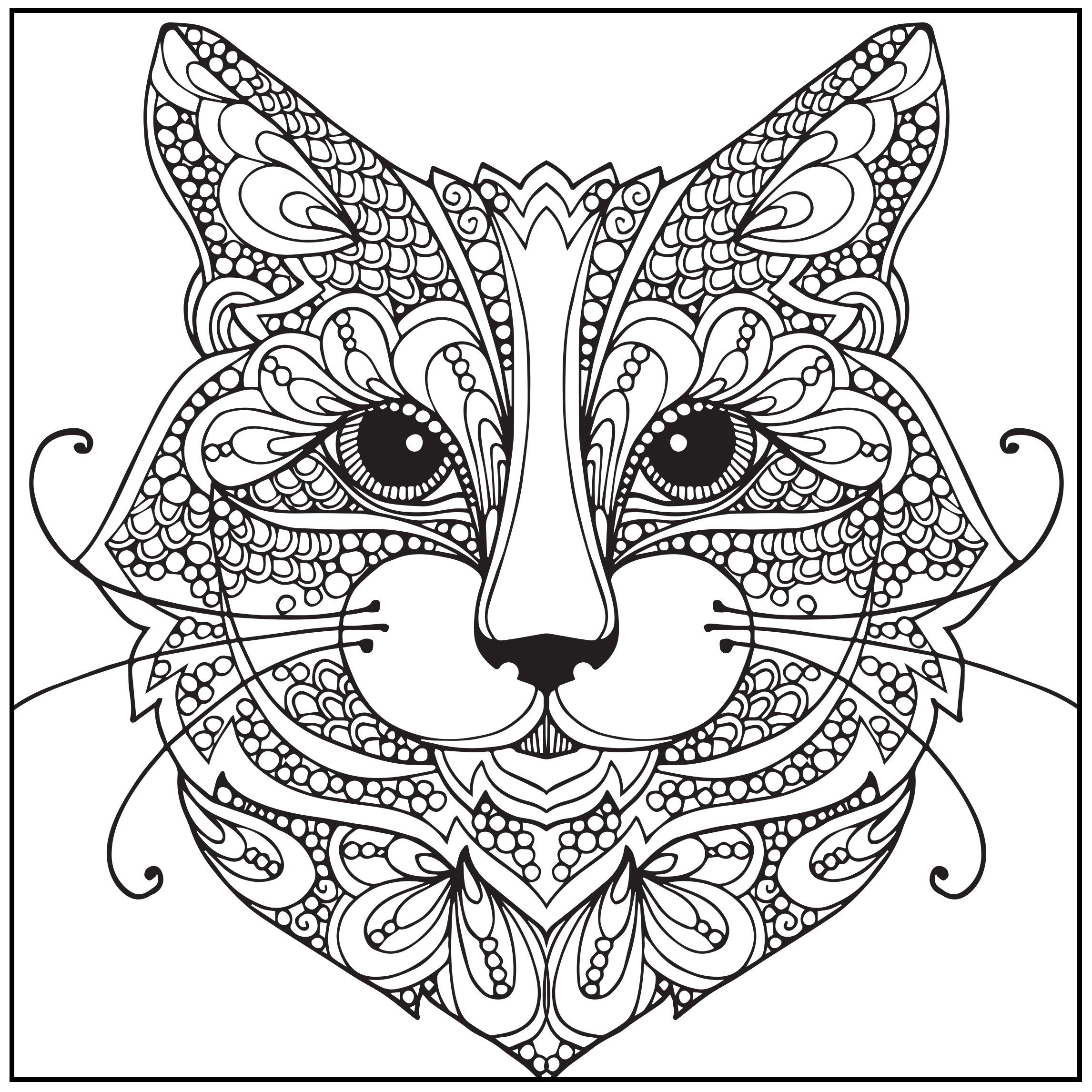 DIRECTLY FROM SITE>> Amazon.com: ADULT COLORING BOOK: Wild About ...