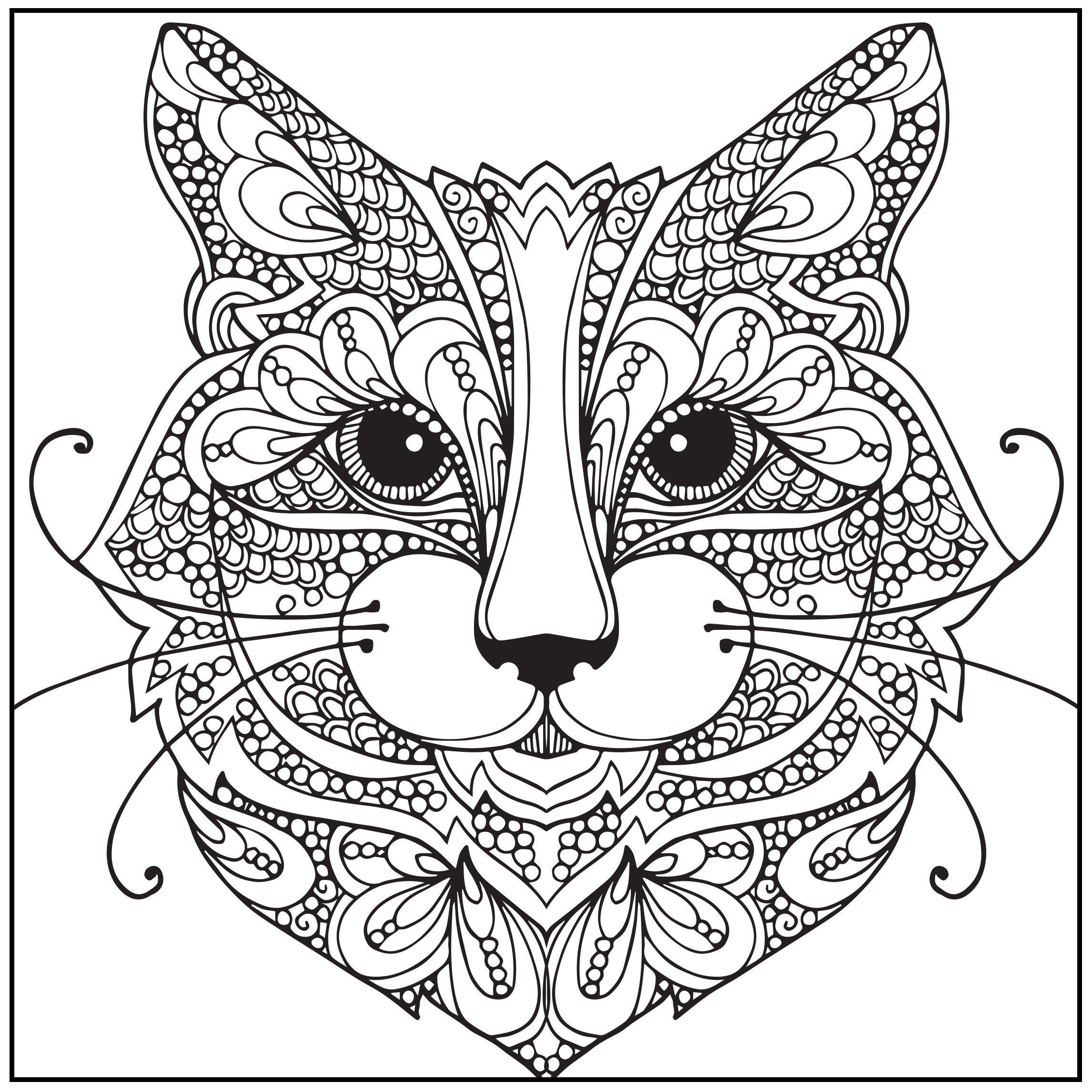 Stress relieving cats coloring - Amazon Com Adult Coloring Book Wild About Cats Stress Relieving Designs Includes Bonus