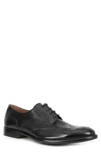 Bruno MagliParma Wing Tip Leather Derbys iBHBc8ODo2