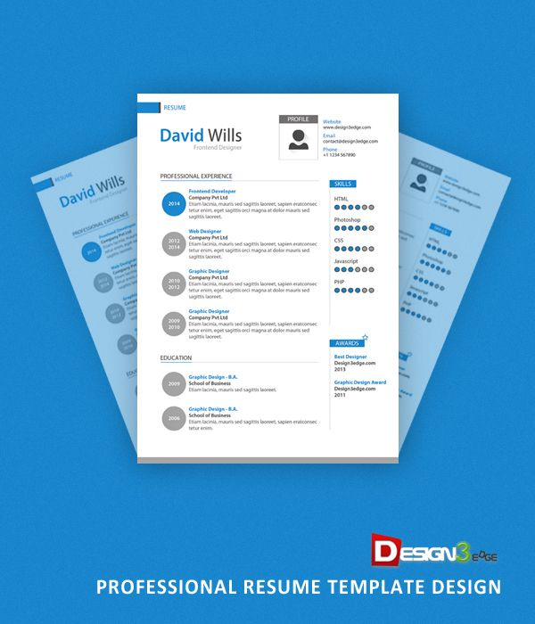 Professional Resume Template Design Designthree Edge  Publication