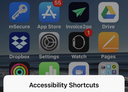 iOS Native Magnifier App Magnifier, Homescreen, App