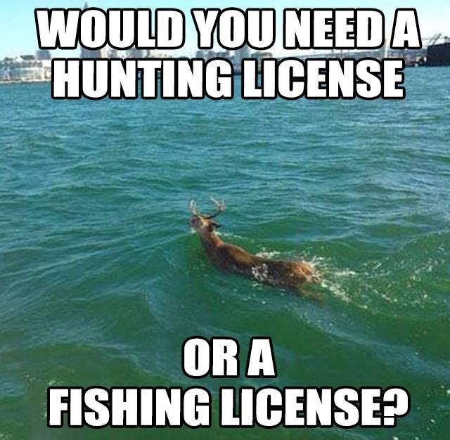 Untitled Funny Animal Jokes Funny Hunting Pics Hunting Humor