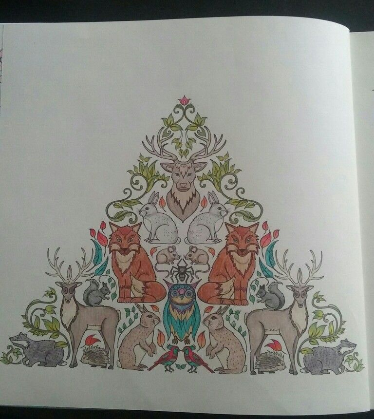 Colored By S Field JohannaBasford EnchantedForest ColoringBooks