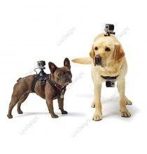 Dog Pet Fetch Harness Chest Strap Belt Accessory Holder for GOPRO 3+ GOPRO4 SJ4000 5000 6000
