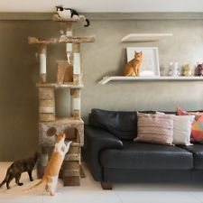 7 Ways To Keep Your Indoor Cat Happy Cat Furniture Large Cat Tree Furniture Scratches