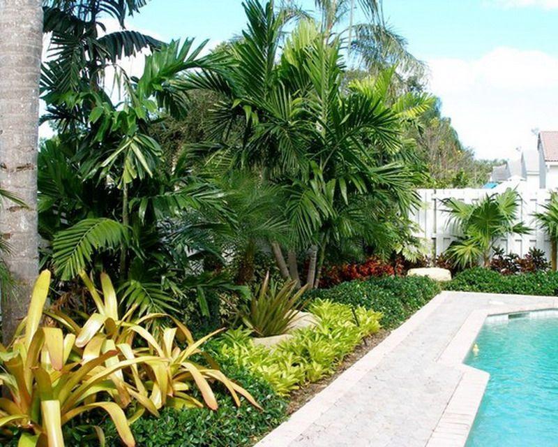 Tropical Landscape Design Ideas Contemporary Tropical Poolside Garden Patio Design Creating A Tropical Landscape Design Tropical Landscaping Landscape Design