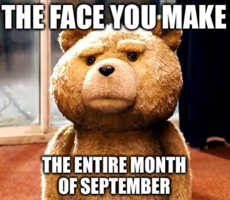 End Of Fiscal Year Government Worker Contracting Ted Meme Work Memes Teddy