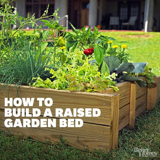 Raised Garden Bed Plants: Build Your Own Raised Garden Bed In 6 Easy Steps