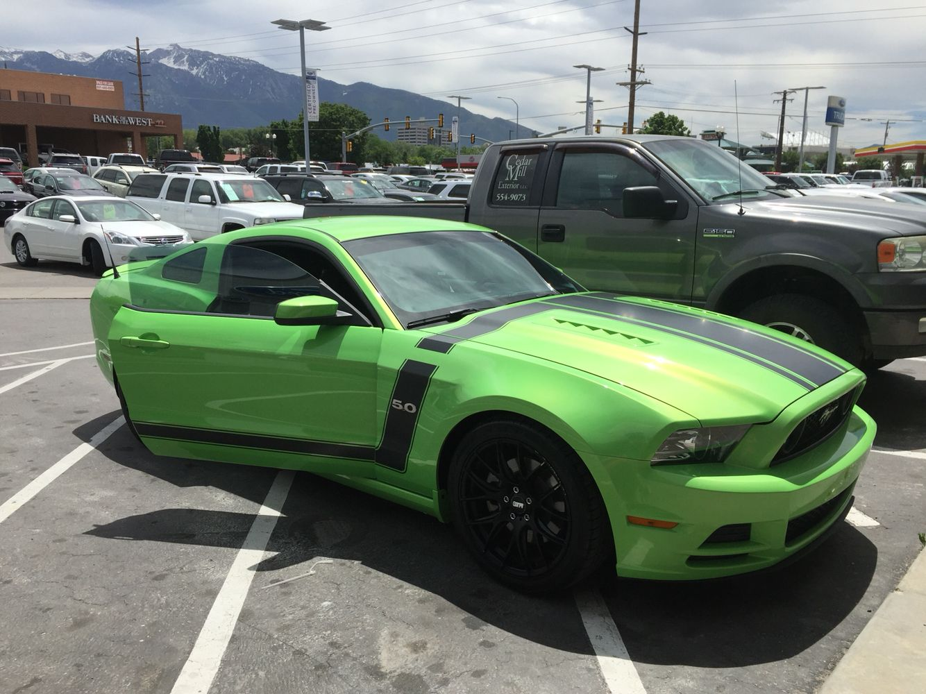 Traded my blue GT for this awesome green 5.0!!
