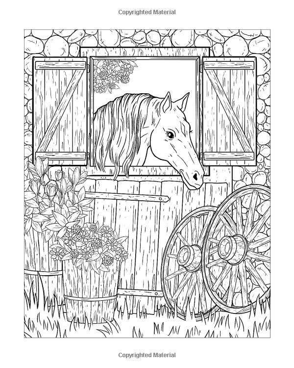 Amazon Com Country Life A Coloring Book For Adults Featuring Charming Farm Scenes And Animals Beautiful Country Farm Scene Country Landscaping Country Life
