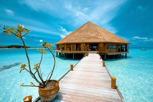 Go Back To Meeru Island Maldives Where We Went On Our