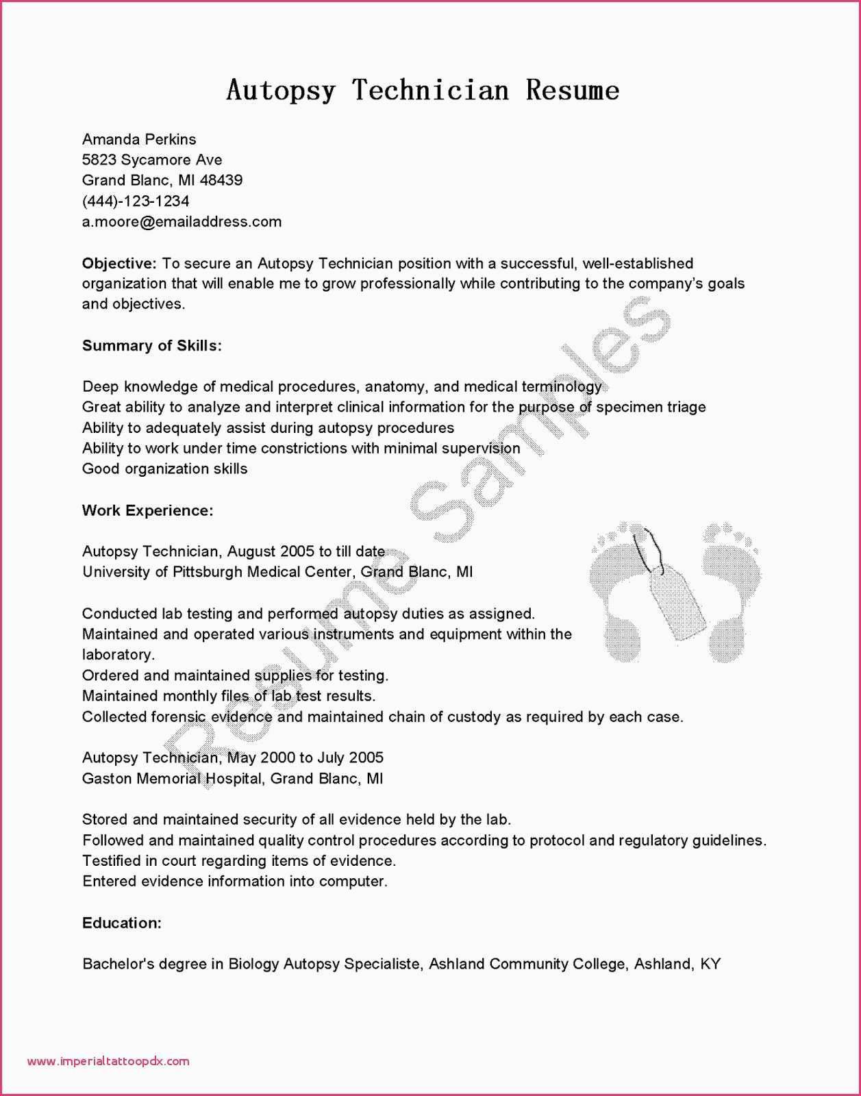 80 Inspiring Collection Of Information Technology Security Resume Examples
